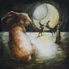 The Odyssey of a Hare I