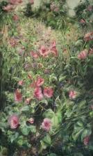 1. Pink Mallow