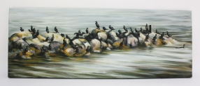 21. Cormorants