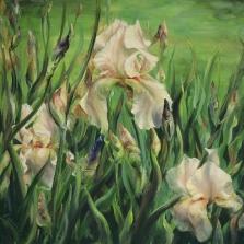 10. Pale Iris