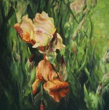 13. Bronze Iris