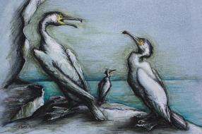 35. Three Cormorants