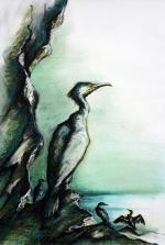 36. Cormorants on the Cliffs