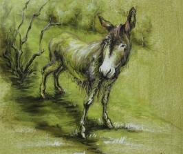 38. The Donkey