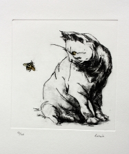 14. Cat and Bee